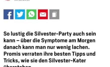blick_silvester_kater_tipps_von_promis_mrdanos
